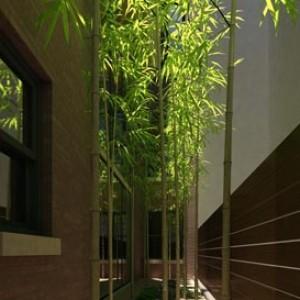 3D Architectural Exterior Rendering rendering roof garden NYC